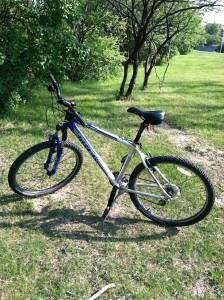Bike, the new horse
